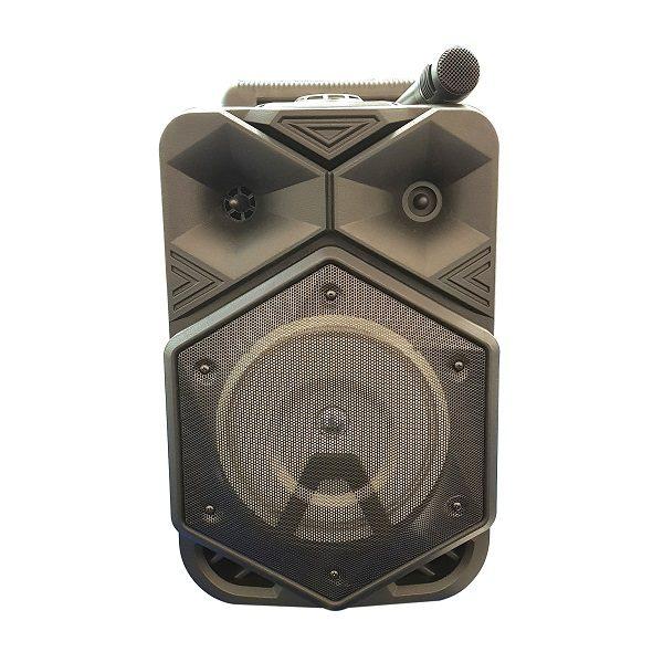 Аудио-система 1777